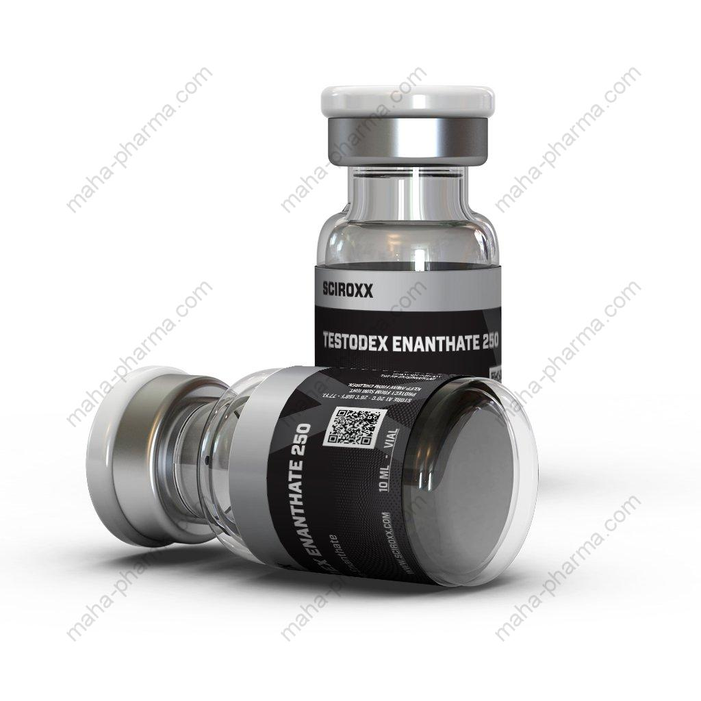 Testodex Enanthate 250 (Sciroxx) for Sale
